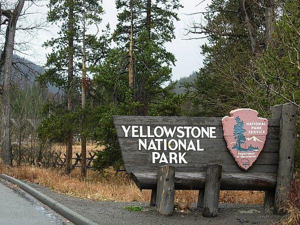 Yellowstone NP, WY 10.29.05